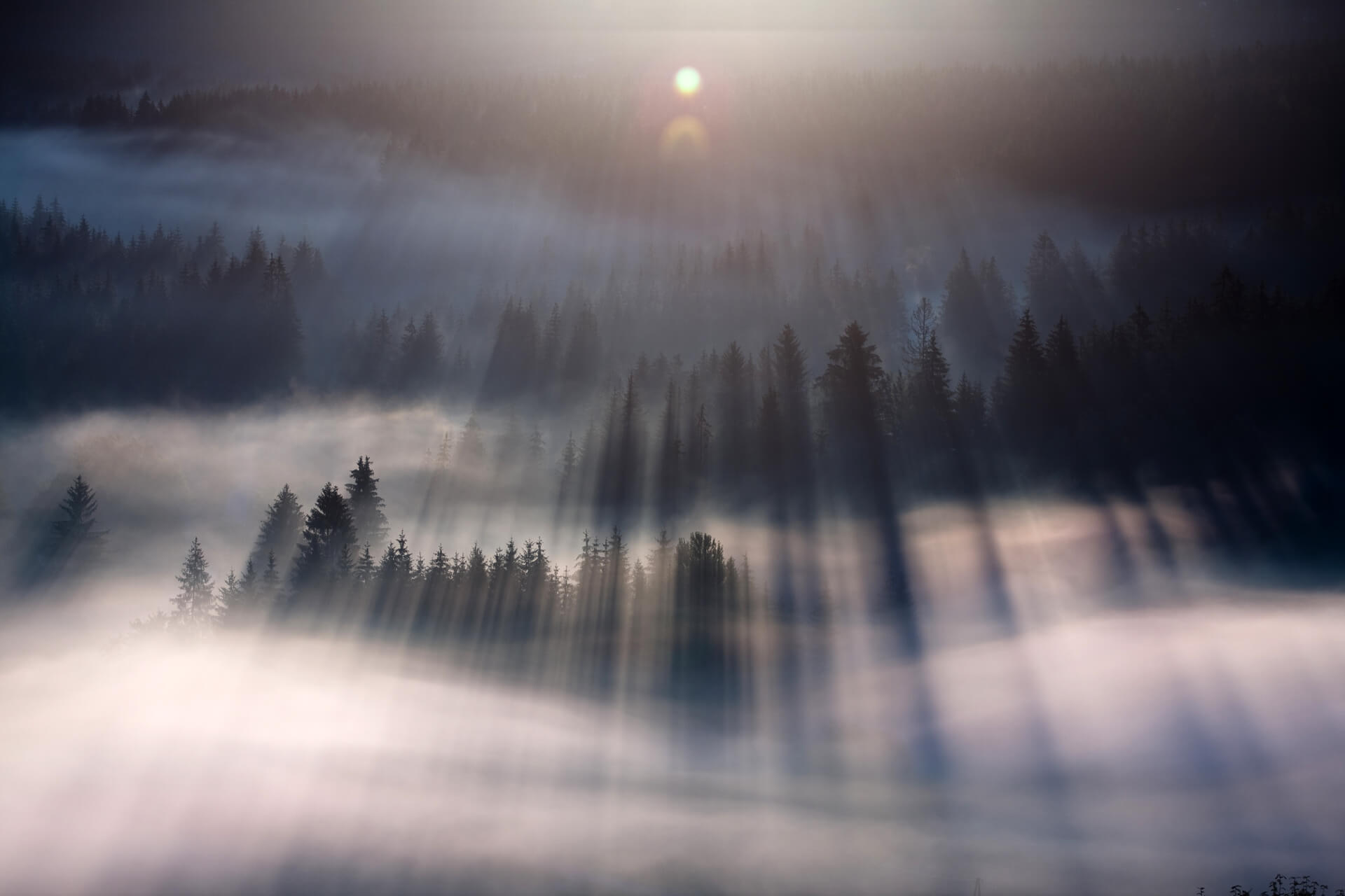 First rays by Marcin Sobas - Downloaded from 500px